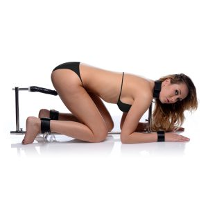 Punish and please your plaything in this deviously distinctive twist on a stockade Restrain your lover by their neck