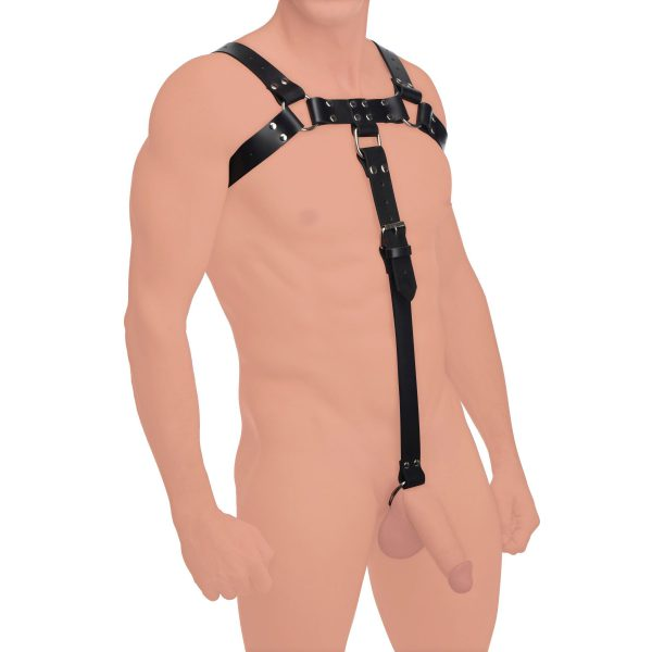This fetish wear duo combines an enticing chest harness with a naughty cock strap