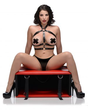 Time to take facesitting more seriously with an exquisite piece of BDSM furniture that makes oral sex more comfortable and therefore longer-lasting! Queening stools