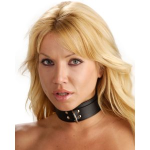 The Strict Leather Lightweight Leather Lined Collar is very affordable and well crafted. Unlike many cheaper leather collars